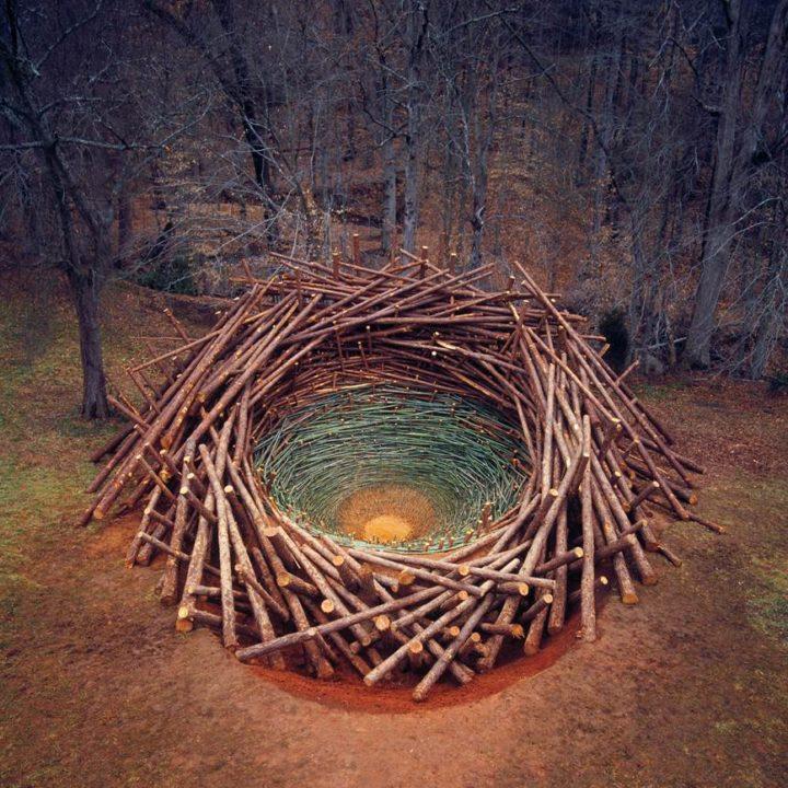 Nils-Udo « Clemson Clay - Nest », 2005